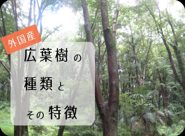 外国産広葉樹